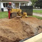 Mooresville Stump Gridning