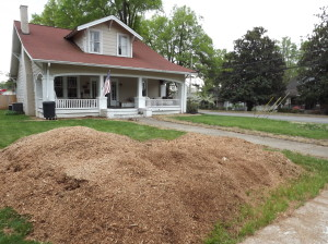 Mooresville Stump Removal